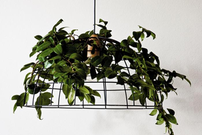 canopy-grande-pendant