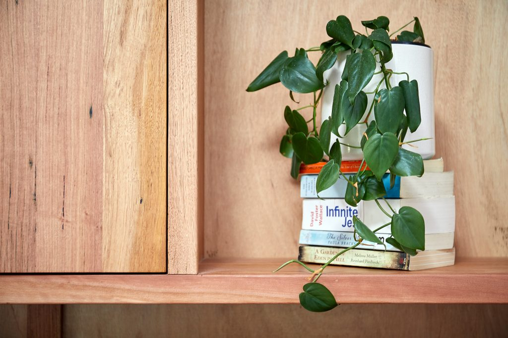 timber bookcase with plant